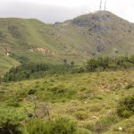 Armeni Paradise