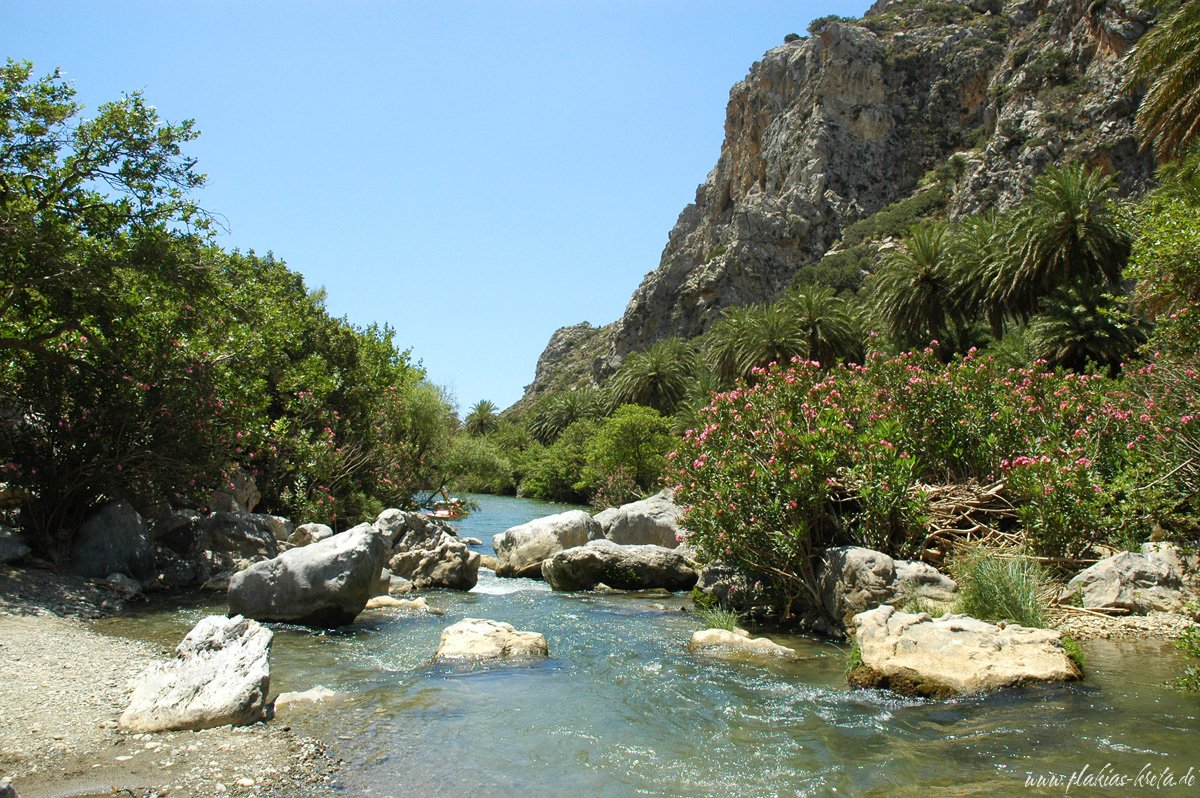 River in the Palmtrees of Preveli