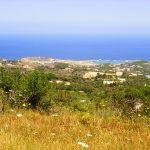 Armeni Paradise - Plot for Development