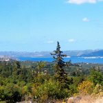 View from Xirosterni Plot