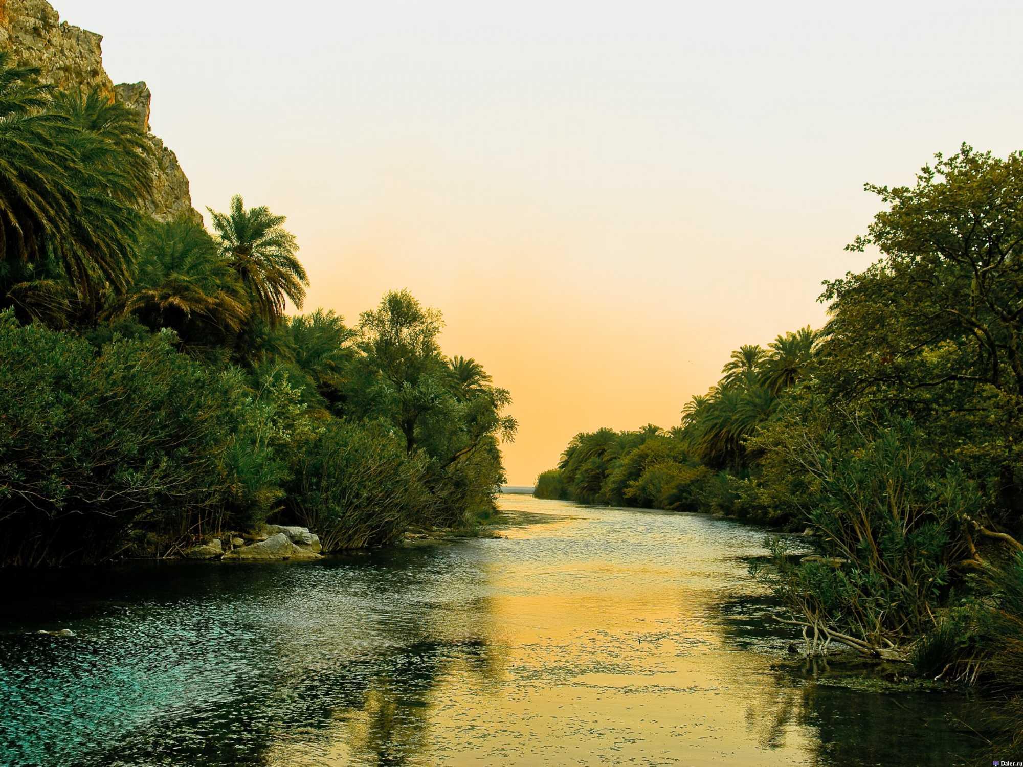 Preveli River through the Palm Trees