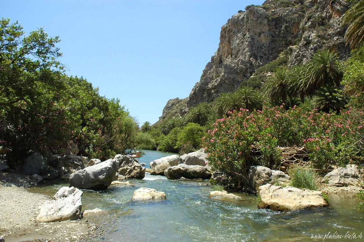 River in the Palmtrees of Preveli