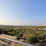 View Project Loutra Villa Lavender